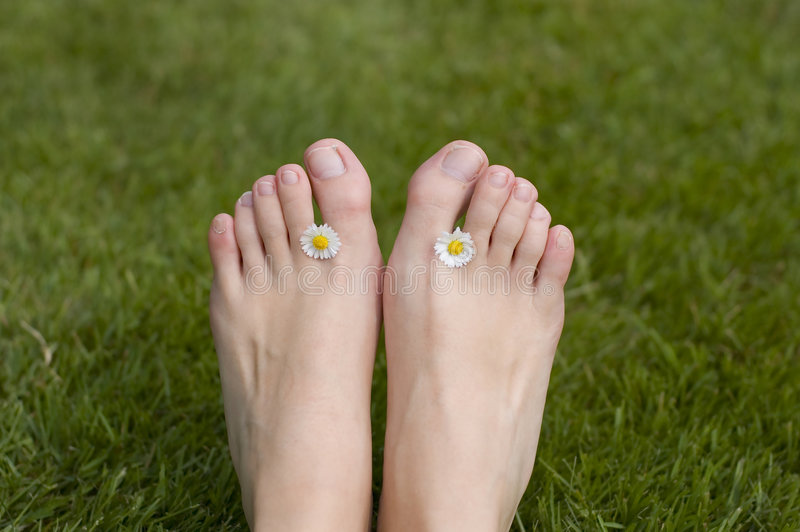 Summer feet toes. Summer feet with a flower royalty free stock photo