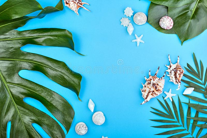 Summer female fashion flat lay. tropical palm branches and seashells on blue background. Beach, vacation, travel concept royalty free stock photography
