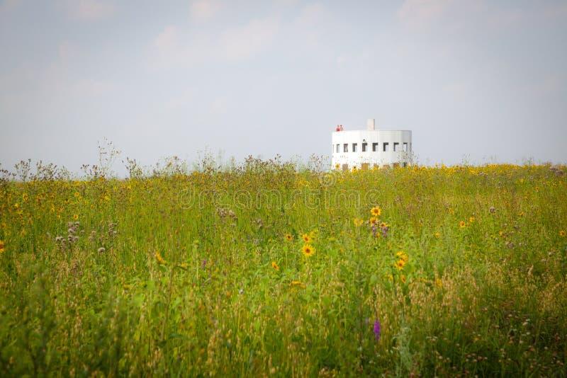 Summer field, Kaluga region, Russia royalty free stock photo