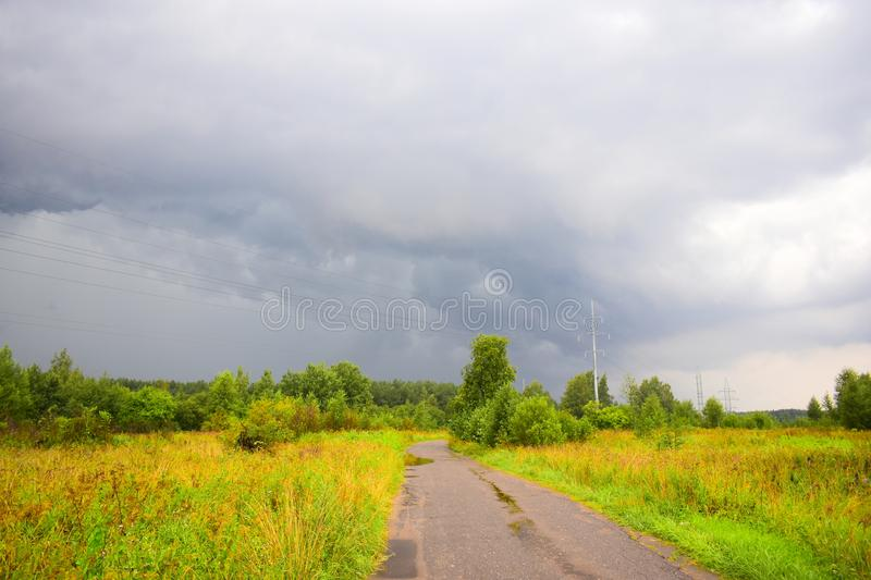 Road Through The Summer Meadow Stock Photo - Image Of -5414