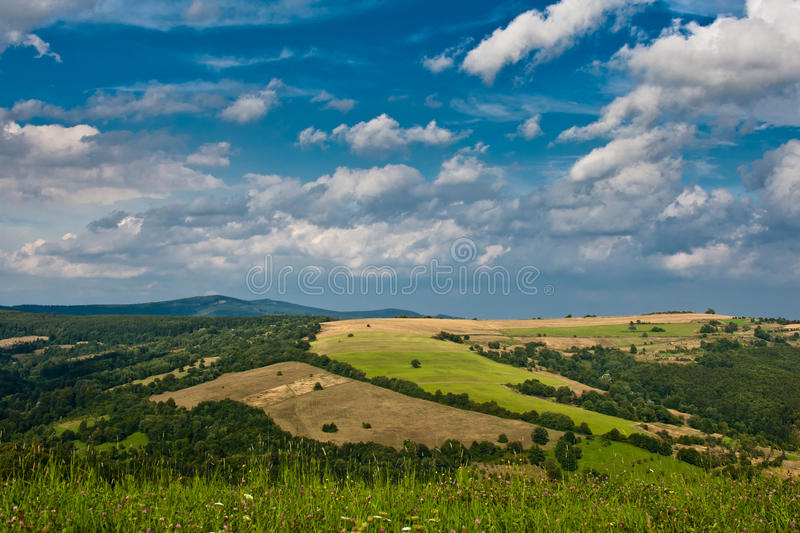 Summer field. Under cloudy sky in mountains during morning stock photos