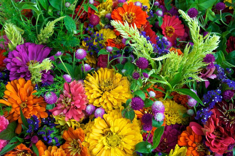Summer flower bouquets stock photo. Image of summer, bouquet - 15487750
