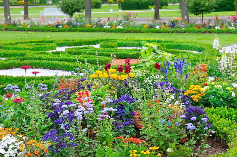 Summer flowerbed and green lawn. Summer flower bed and green lawn royalty free stock photography