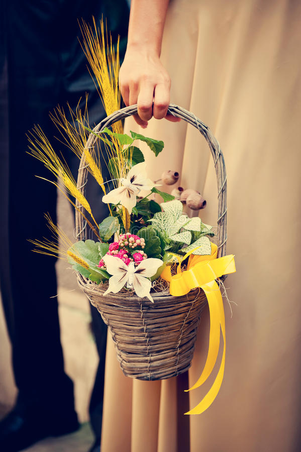 Download Summer Flowers Stock Image - Image: 22997291