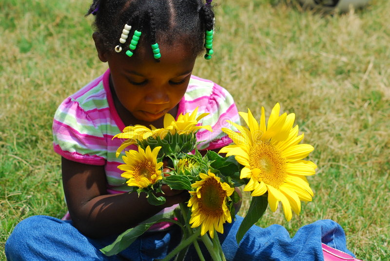 Summer Flowers. A young girl holds a handful of sunflowers while she looks down and smells them royalty free stock images