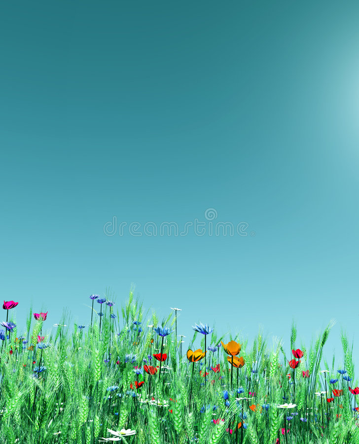 Summer flowers royalty free illustration