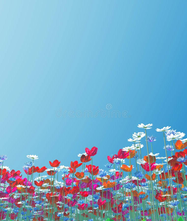 Free Summer Flowers Stock Images - 5865214