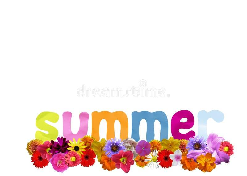 Summer flowers vector illustration