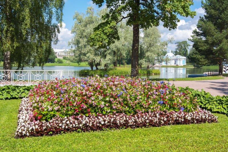 Summer flowers in Catherine park, Tsarskoe Selo, Saint Petersburg, Russia royalty free stock photo