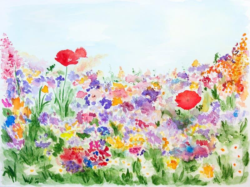 Summer flowers in garden watercolor hand drawn vector illustration