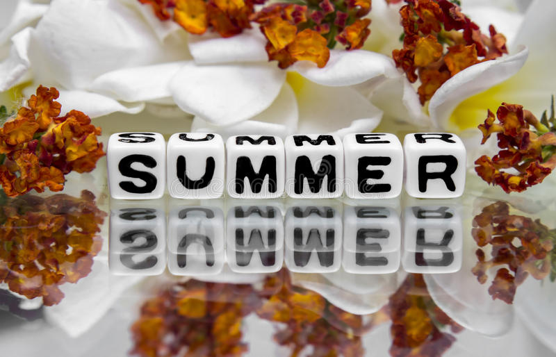 Download Summer with flowers stock photo. Image of isolated, message - 41045904