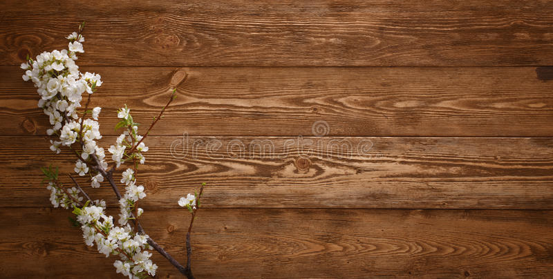 Summer Flowers On Wood Background With Copyspace Stock