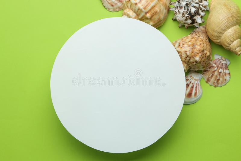 Summer frame. Paper frame for your text and seashells on a bright green background. top view royalty free stock images