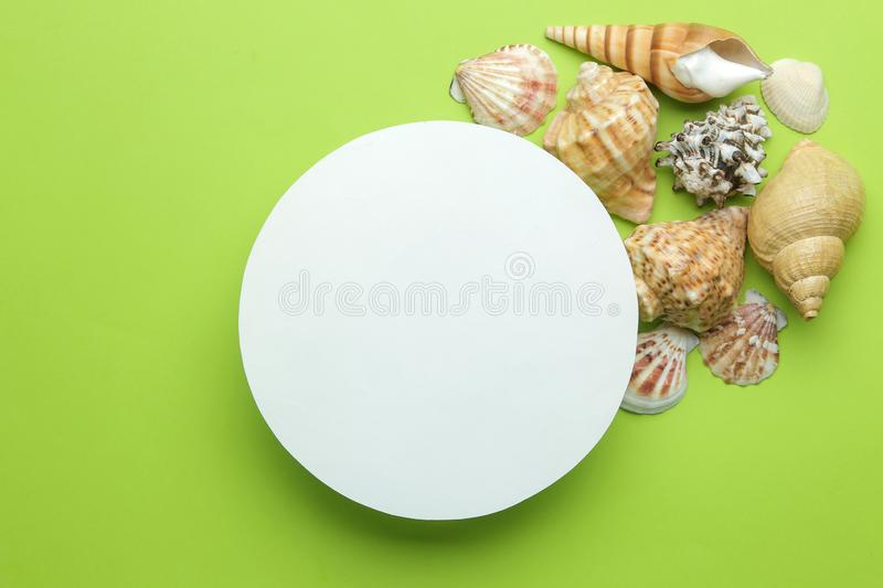 Summer frame. Paper frame for your text and seashells on a bright green background. top view royalty free stock image
