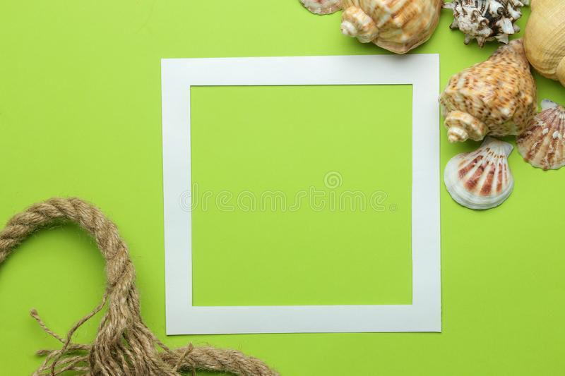 Summer frame. Paper frame for your text and seashells on a bright green background. top view. Summer frame. Paper frame for your text and seashells on a bright stock photography