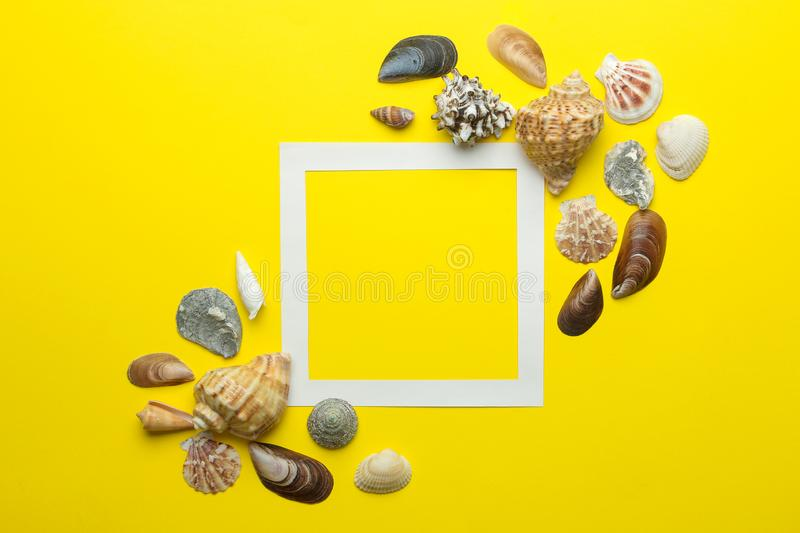 Summer frame. Paper frame for your text and seashells on a bright yellow background. top view royalty free stock photography