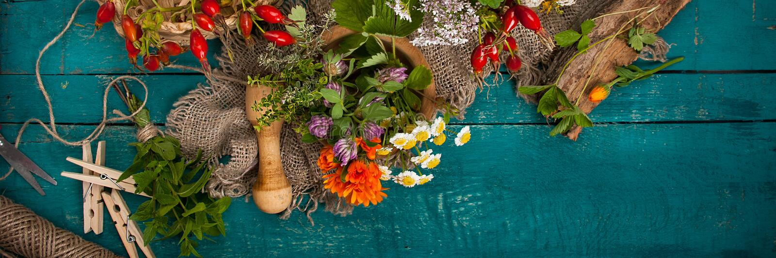 Summer fresh medicinal herbs on the wooden background. stock image