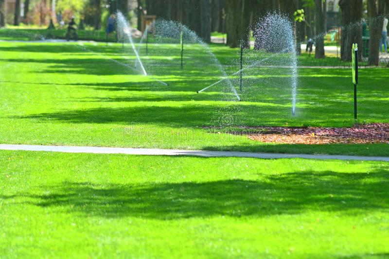Summer fresh park. Grass watering system. Green lawn irrigation background.  royalty free stock images
