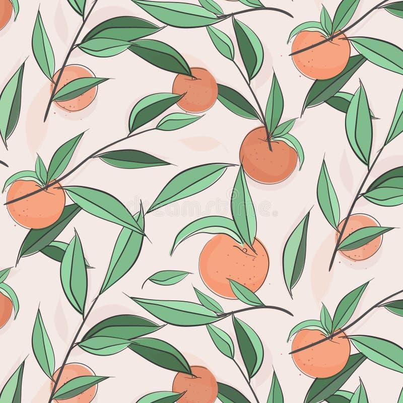 Summer fruit peach banner. Vector sketch illustration. Exotic leaves nectarine pattern. Pastel color print. Doodle sweet. Texture. Botanical jungle floral stock illustration