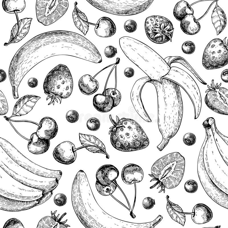 Summer fruit seamless pattern. Hand drawn vintage vector background. Fruit and berry set of banana, cherry, srawberry,. Blueberry. Detailed organic food drawing royalty free illustration