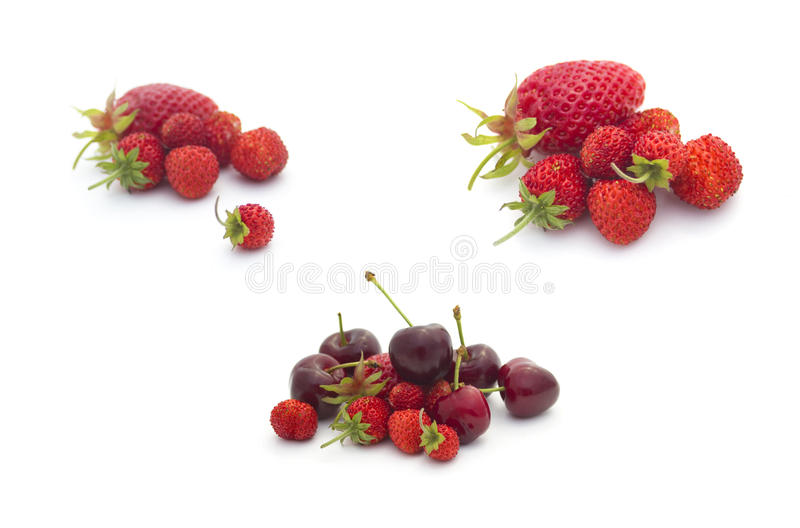 Download Summer Fruits Collection: Fruits On White Stock Photo - Image of vibrant, green: 19499504