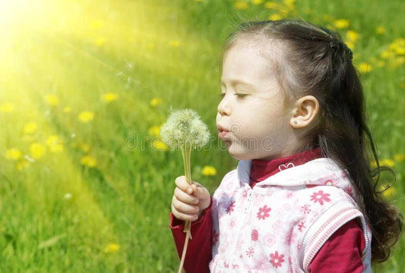 Summer fun, sweet little girl blowing dandelion. On the meadow.outdoor royalty free stock photos