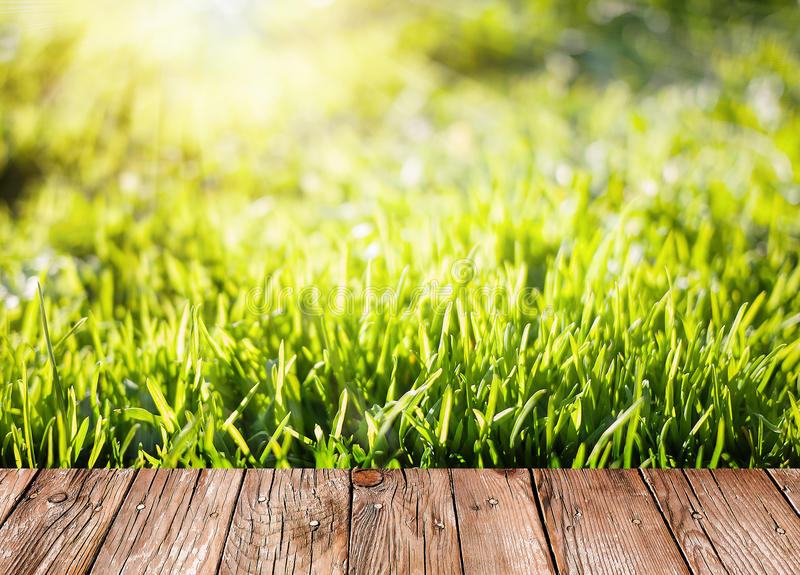 Summer garden background with green grass and wooden planks stock images