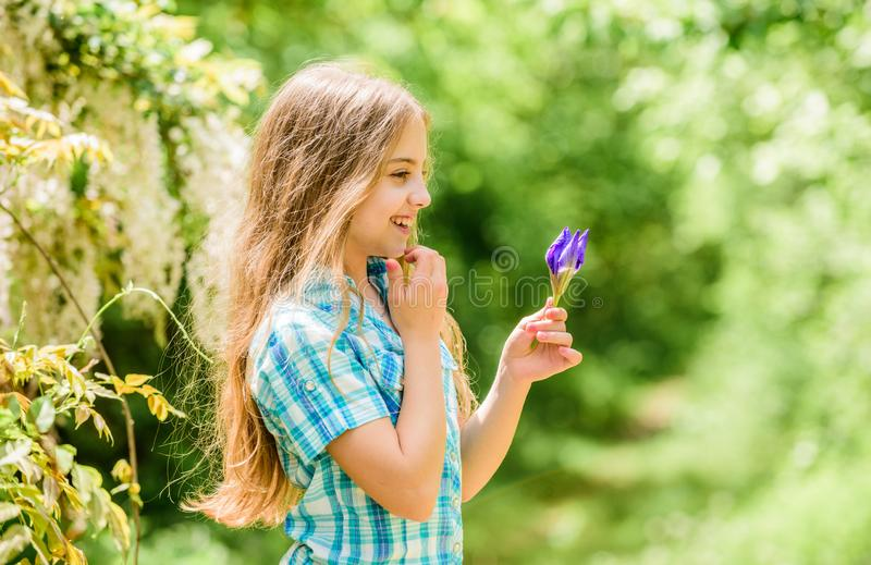 Summer garden flower. Fresh flowers. Collecting flowers in field. Summer is here. Kid hold flowers bouquet. Girl cute. Adorable teen dressed country rustic royalty free stock photo