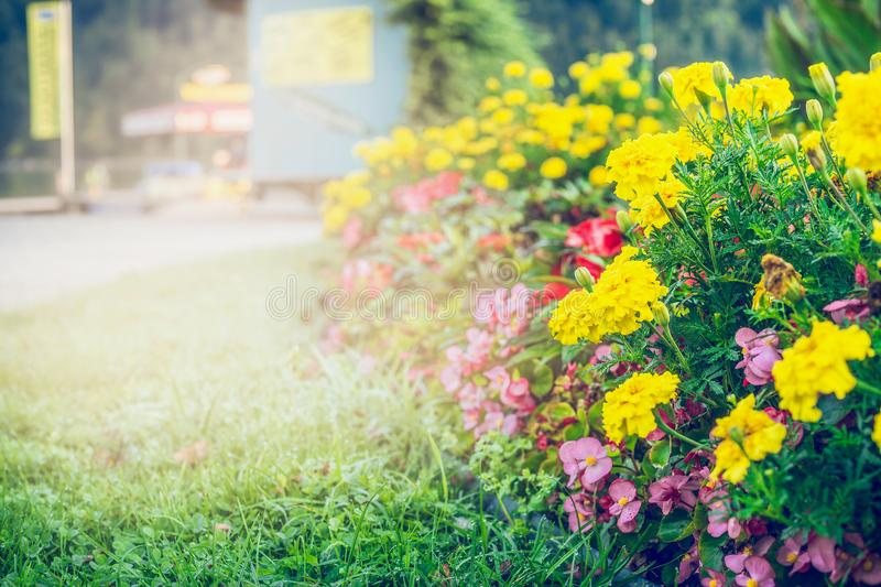 Summer garden or park landscaping with beautiful flowers bed stock photos