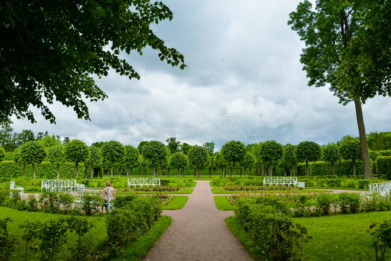 Summer garden in Saint Petersburg, landscape. Beautiful park with trimmed trees, people, green lawn, benches. Famous historical place. For posters, interior stock photography