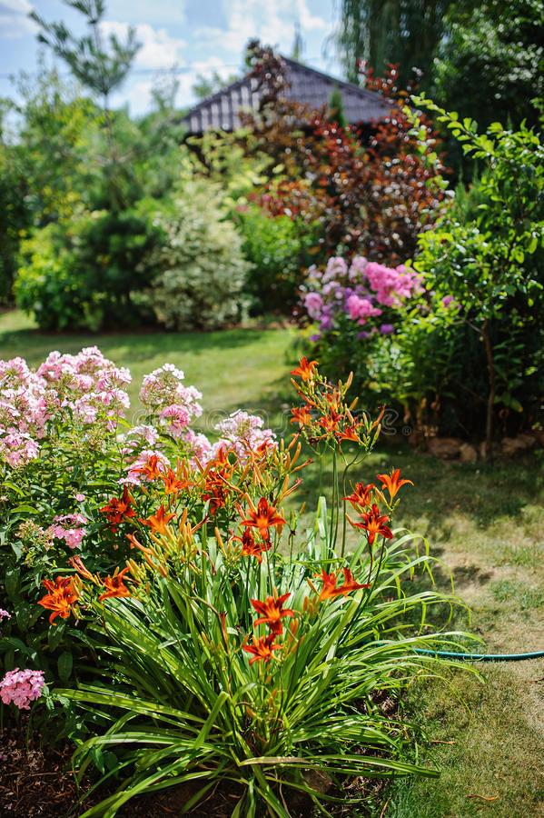 Summer garden view in sunny day stock images