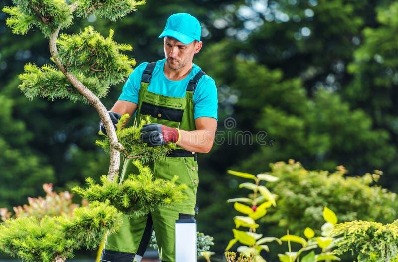Summer Garden Works royalty free stock photos
