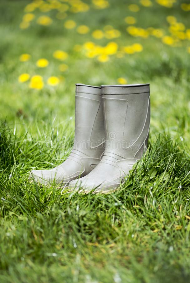 Summer gardening, green rubber boots in the grass. Summer gardening, green rubber boots and yellow flowers in the grass stock photo