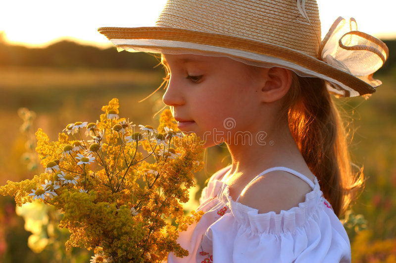 Summer girl. On sunset background stock photos