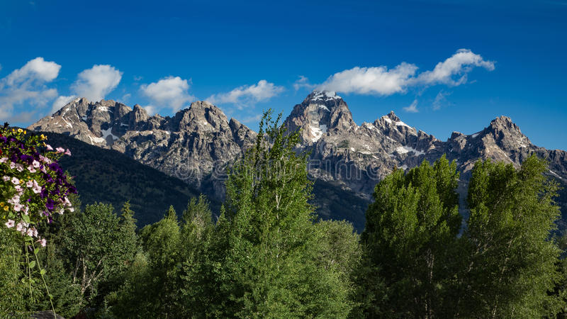Summer in the Grand Tetons stock photos