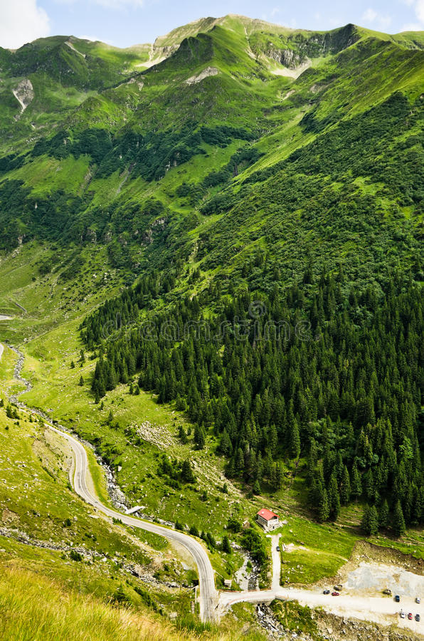 Summer green mountains