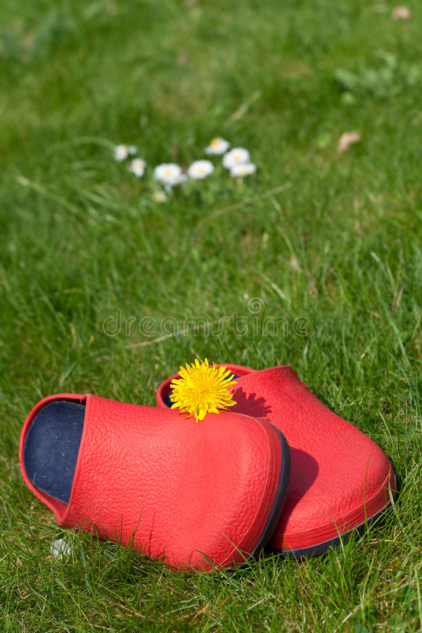 Download Summer happiness stock image. Image of crocs, flower, leisure - 9309649