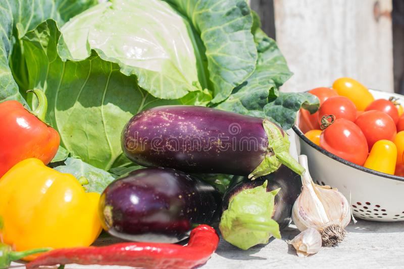 Summer harvest of fresh and organic vegetables stock images