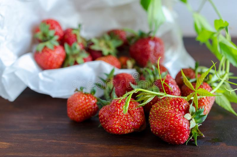 Summer harvest of juicy ripe tasty strawberries with green twig on dark table stock images