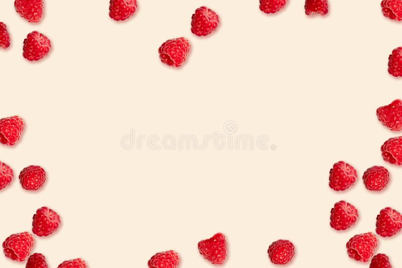 Summer health concept. Ripe red raspberries berries randomly lie on a pink background. Ripe red raspberries berries randomly lie on a pink background. Summer royalty free stock images
