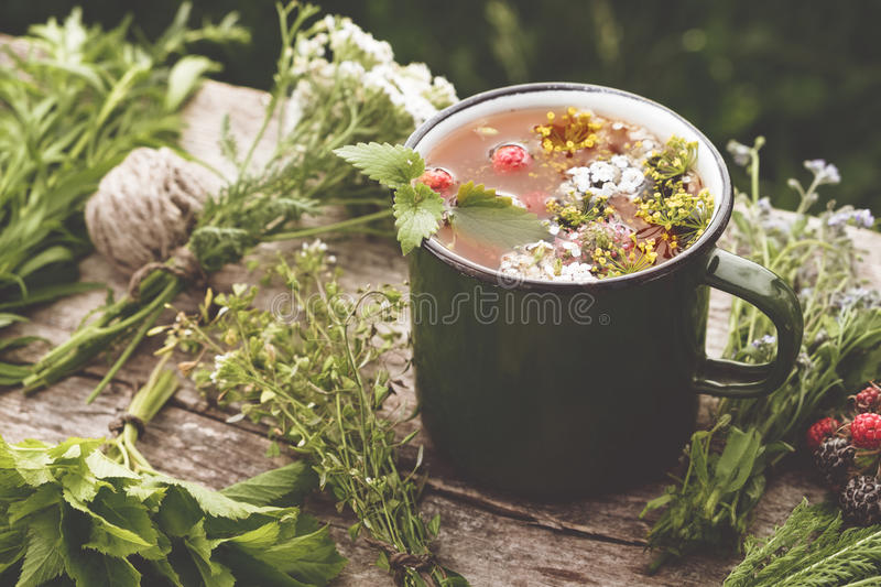 Summer healthy herbal tea in old enameled mug and bunches of healing herbs on wooden board. Herbal medicine. stock photos