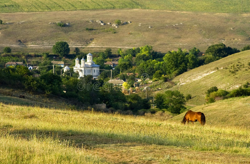 In the summer heat. Summer landscape with hills, romanian orthodox church and a horse grazing in foreground stock photography