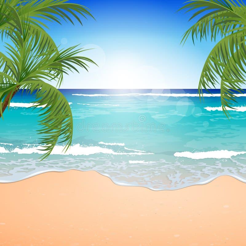summer holiday backgrounds wwwpixsharkcom images