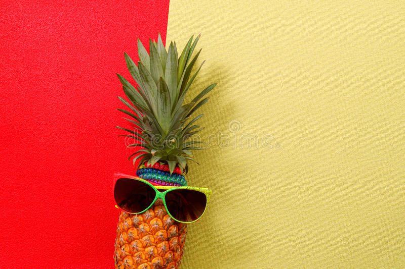 Download Summer And Holiday Concept.Hipster Pineapple Fashion Accessories Stock Image - Image of design, funky: 95533863