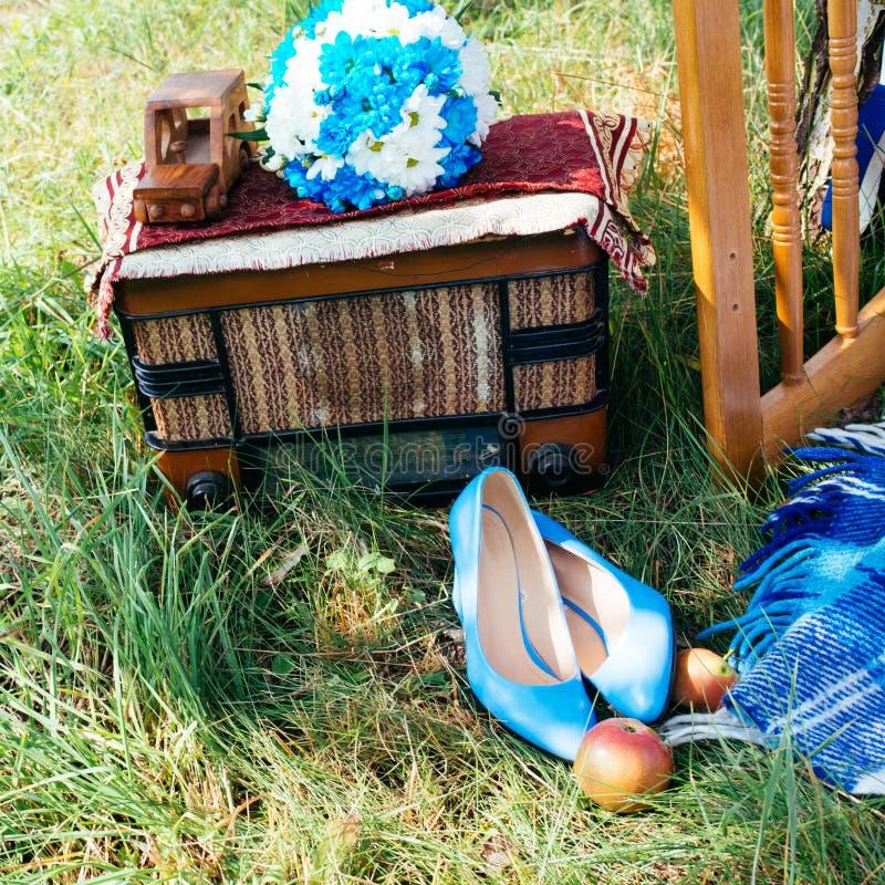 Summer holiday picnic royalty free stock photos