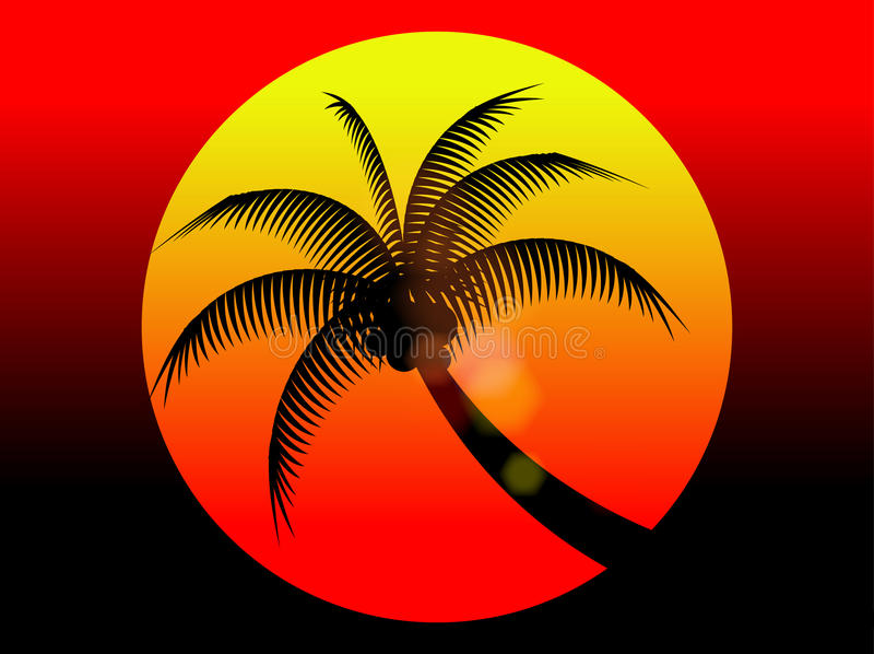 Summer holiday red sunset and coconut tree stock images