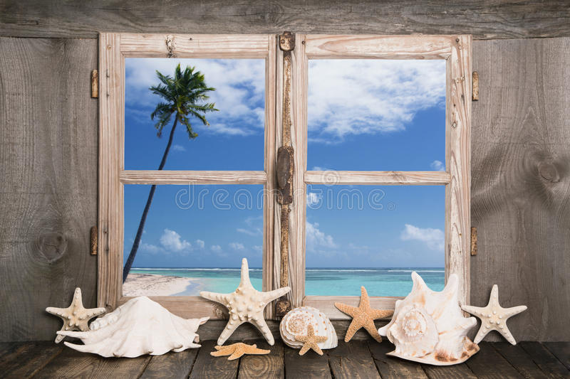 Summer holidays on the white sand beach - sea view. Summetime - summer holidays on the white sand beach - sea view to one palm tree royalty free stock photography