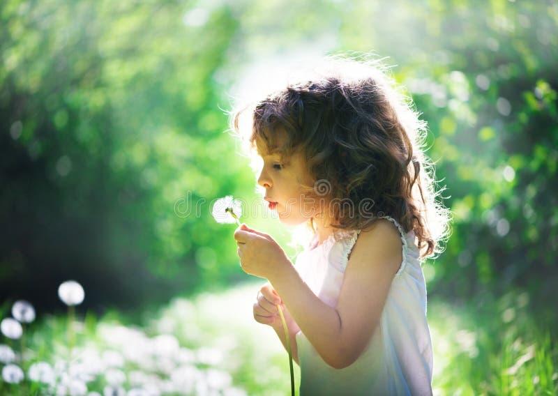 Summer joy. Child has summer joy with dandelion royalty free stock images