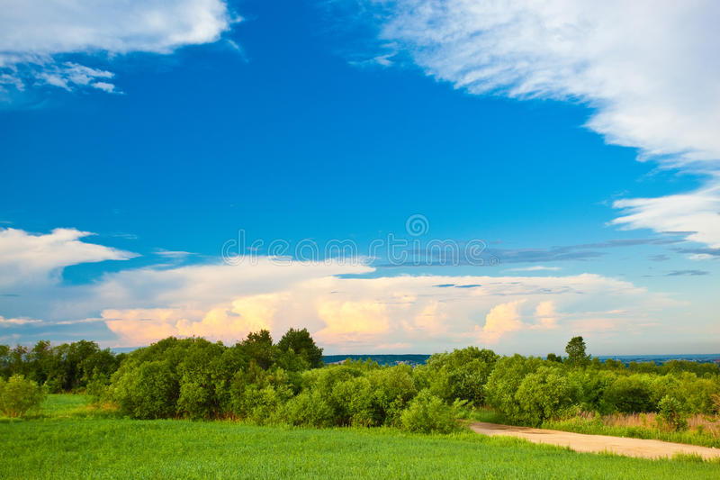 Download Summer ladscape stock image. Image of outdoor, background - 15499165