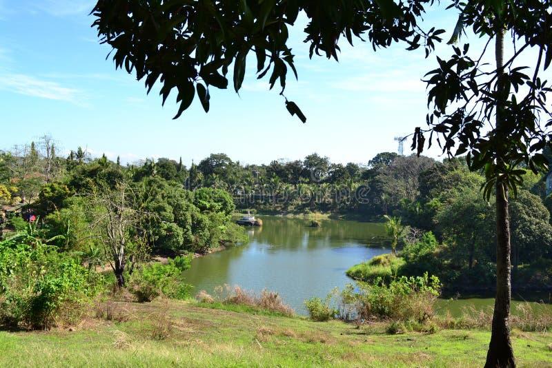 Summer Lake. This a jumboree lake at Muntinlupa Philippines stock image